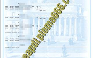 buy Columbia University transcript