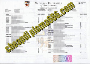 fake National University of Singapore transcript