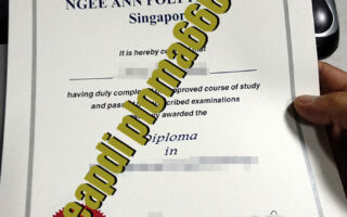 Ngee Ann Polytechnic degree certificate