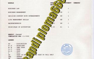 fake Ngee Ann Polytechnic transcript