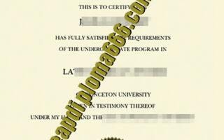 Princeton University degree certificate