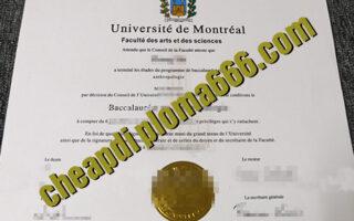 fake Université de Montréal degree certificate