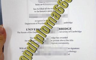 buy University of Cambridge degree certificate