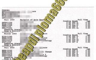 fake University of Guelph transcript