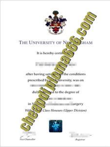 University of Nottingham degree