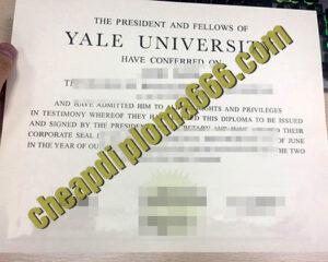 buy Yale University degree certificate