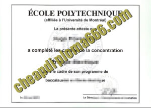buy École Polytechnique degree certificate