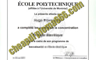 buy École Polytechnique degree certificate