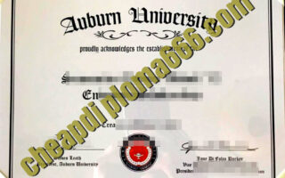 buy Auburn University degree certificate