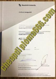 Maastricht University degree certificate