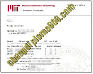buy Massachusetts Institute of Technology transcript