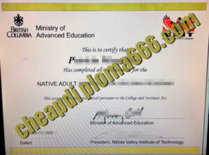 buy Nicola Valley Institute of Technology degree certificate