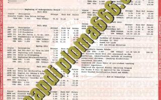 buy Northern Illinois University transcript