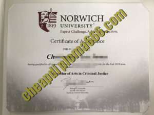 buy Norwich University of the Arts degree