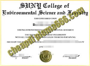 State University of New York degree