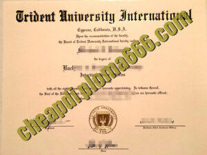 buy Trident University International degree certificate
