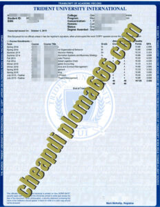 buy Trident University International transcript