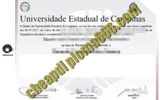 Universidade Estadual de Campinas degree certificate