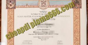 buy Università di Bologna degree certificate
