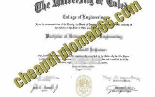 University of Toledo fake diploma