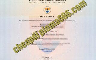 buy Vrije Universiteit Brussel degree certificate