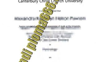 Canterbury Christ Church University fake degree