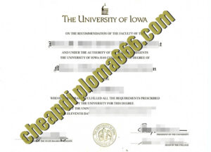 fake University of Iowa degree certificate