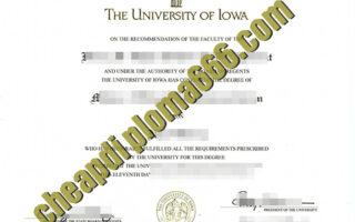 fake University of Iowa degree certificate
