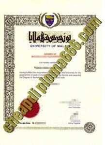fake University of Malaya degree certificate