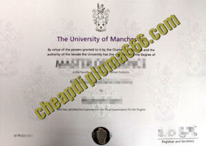 fake University of Manchester degree certificate