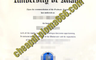 fake University of Miami degree certificate