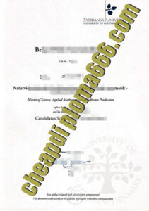 fake University of Southern Denmark degree certificate