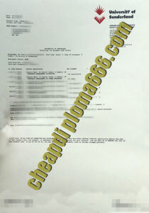 fake University of Sunderland transcript
