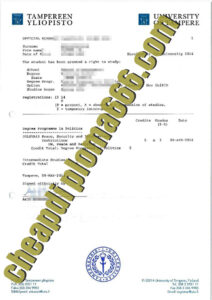 fake University of Tampere degree certifiate