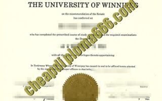 fake University of Winnipeg degree certificate