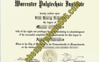 fake Worcester Polytechnic Institute diploma