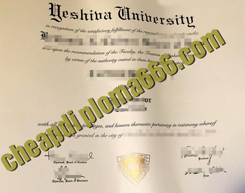 fake Yeshiva university degree certificate