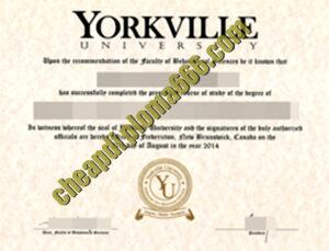 buy Yorkville University degree certificate