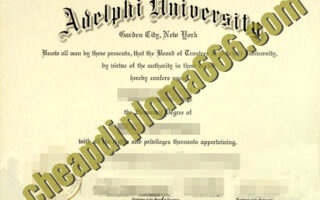 fake Adelphi University degree certificate