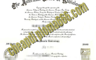 fake American Board of Radiology degree certificate