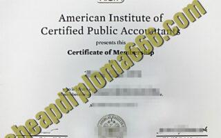 fake AICPA certificate