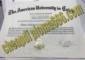 American University in Cairo diploma