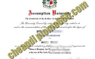Assumption University fake degree