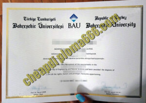 Bahcesehir University degree