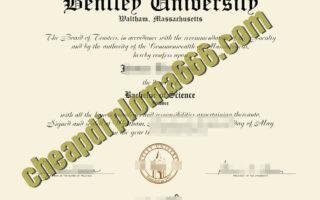 Bentley University degree