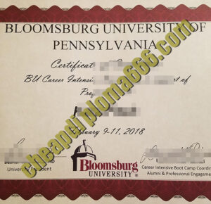 Bloomsburg University of Pennsylvania fake degree certificate