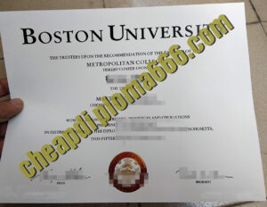 fake Boston University degree
