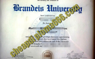 buy Brandeis University degree certificate