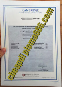 fake Cambridge International Examinations degree