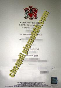 Cardiff University degree